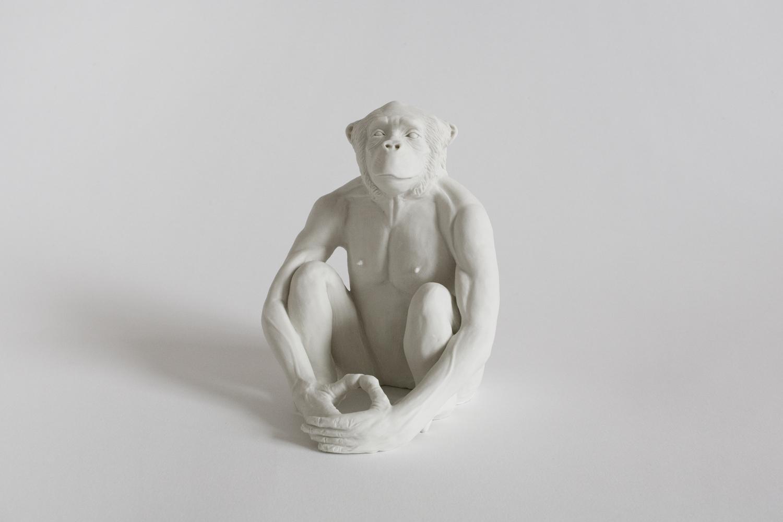 Bonobo2012H: 12 cm